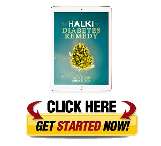 Download Halki Diabetes Remedy PDF