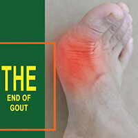 End of Gout PDF