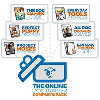 The Online Dog Trainer PDF