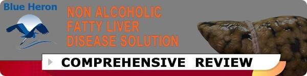 Non Alcoholic Fatty Liver Strategy Review