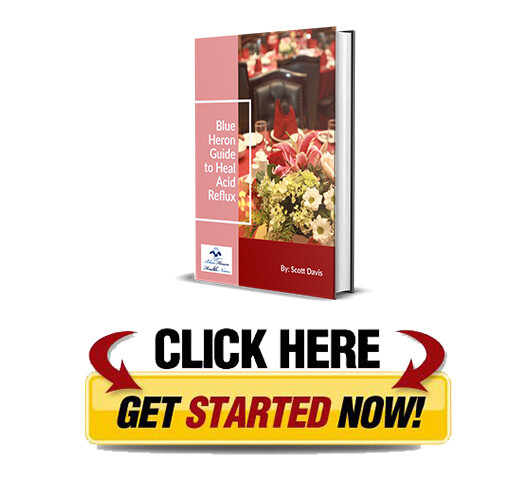 Download The Acid Reflux Strategy PDF