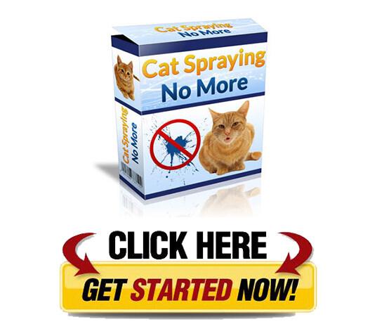 Download Cat Spraying No More PDF