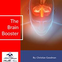 The Brain Booster PDF