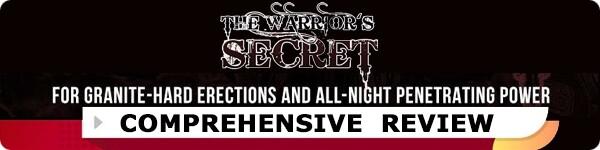 The Warrior's Secret Review